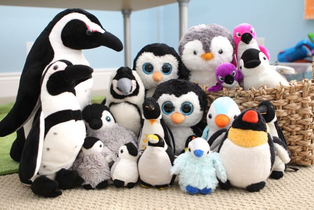 Penguins galore!